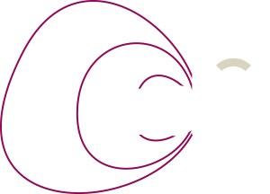 création logo adel évolution négatif rose