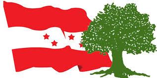 दैलेखमा नेपाली काँग्रेसको जिल्ला नेतृत्वका लागी युवा पुस्ताको होडबाजी