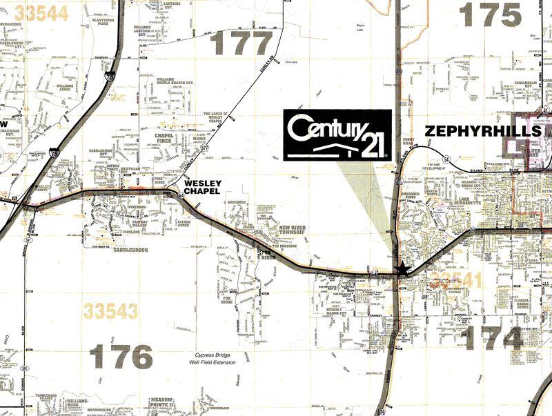 Florida Dmv Zephyrhills Office