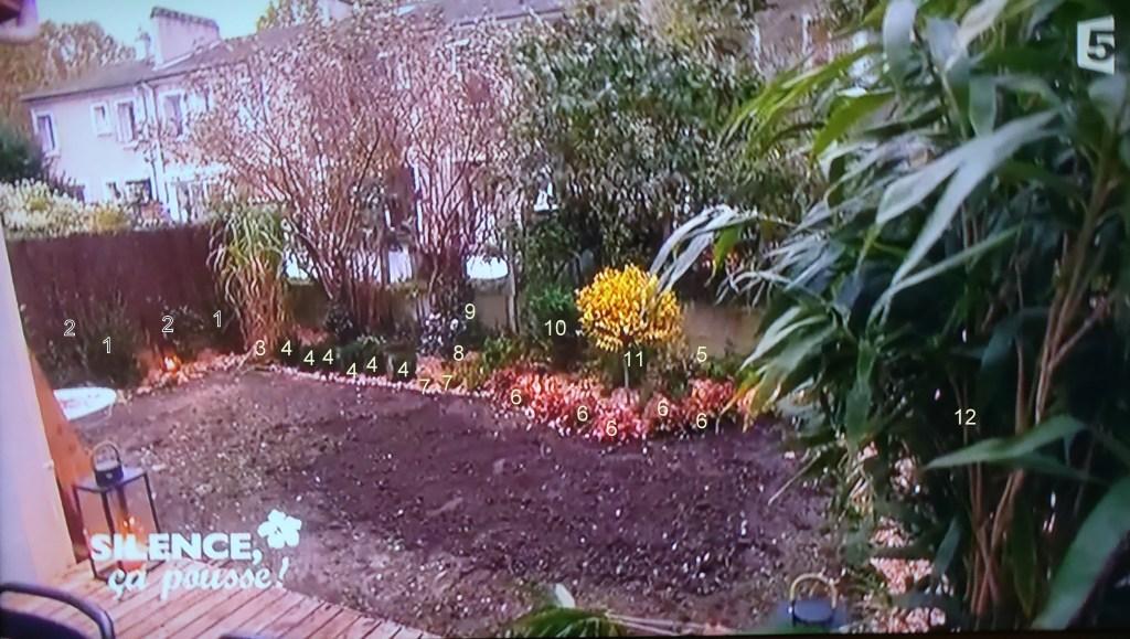 plan plantation jardin anglais