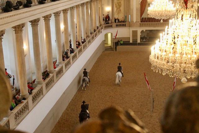 Escuela Ecuestre Viena