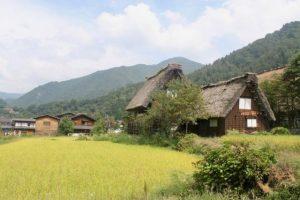 Casas tipicas en Shirakawa-go