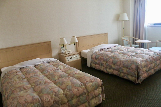 Habitacion Washington Hotel Plaza Takayama
