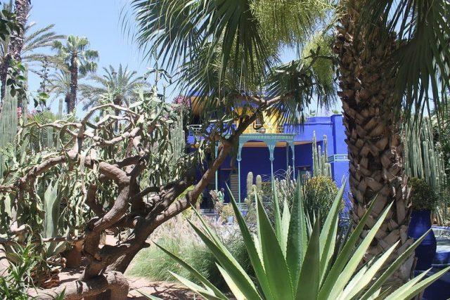 Majorelle Marrakech