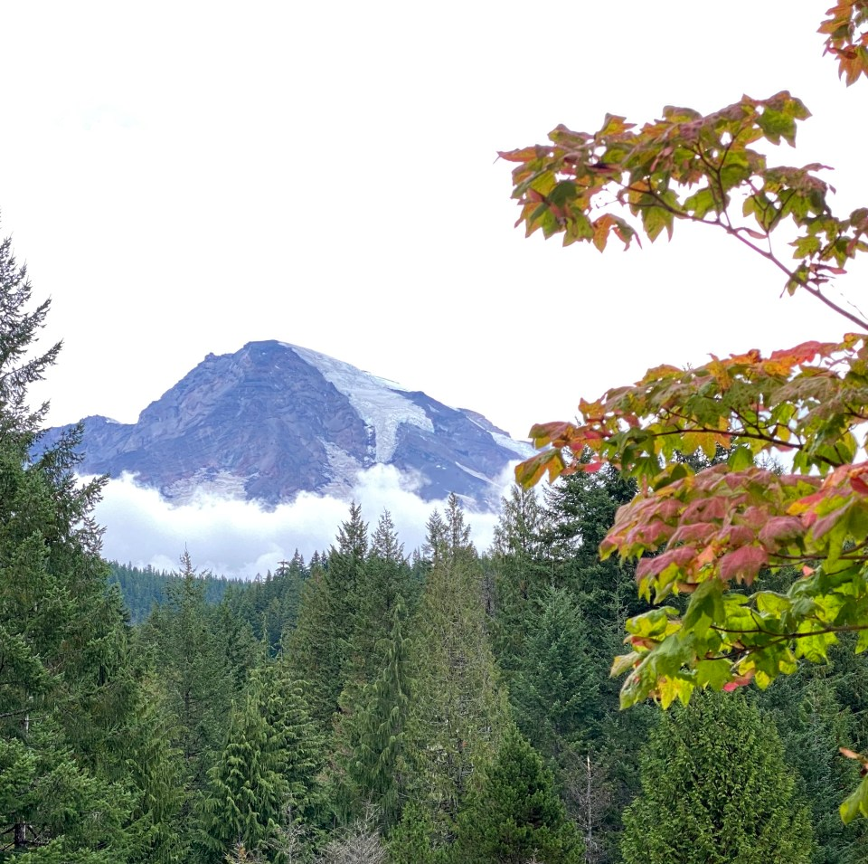 How to spend seven fall days in the Pacific Northwest including Mount Rainer National Park