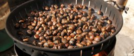 Chestnuts roasting over a fire, South Tyrol, Italy Close-up Close up Nobody Europe Italy Fire South Tyrol Alto Adige High Angle View Campfire Non Urban Scene Travel Chestnuts Day Travel Destination Outdoors Trentino-Alto Adige Food and Drink Dining Mediterranean Countries