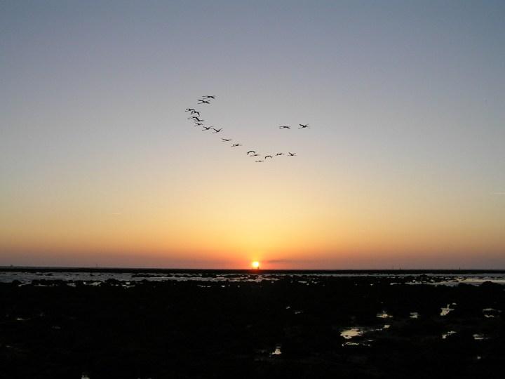 Puesta de sol desde la playa de la Jara de Sanlúcar, frente al Corral del Merlín.   Foto: J. Manuel Vidal-Cordero