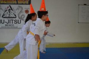 juego taekwondo el rescate