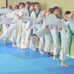taekwondo niños pateando