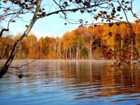 Kildare Lake photo