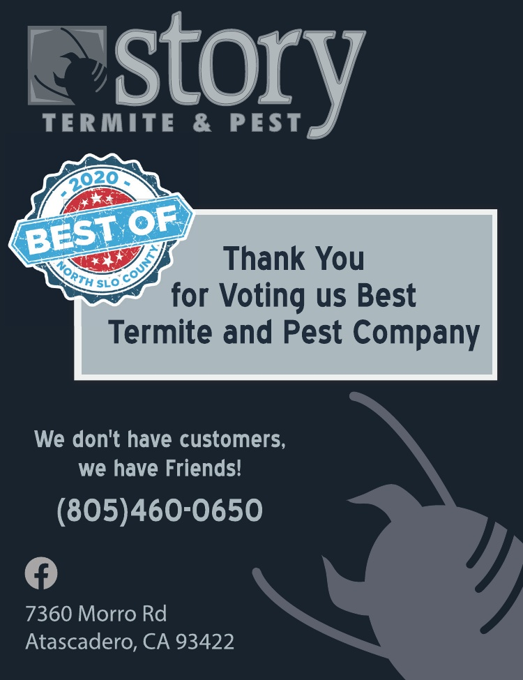 Story Termite & Pest Best of 2020