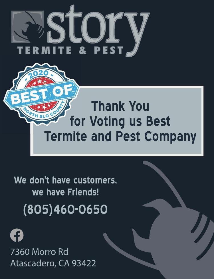 Story Termite & Pest Best of 2020
