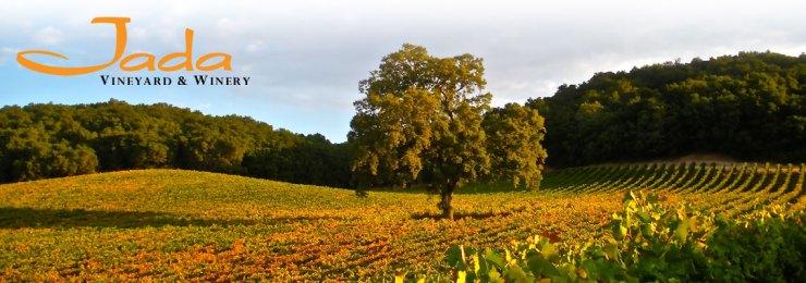 Jada-vineyard-banner