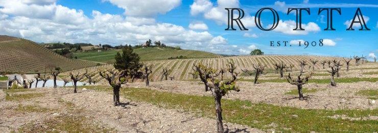 Rotta-Winery-banner