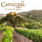 Cutruzzola Vineyards Paso Robles Wineries