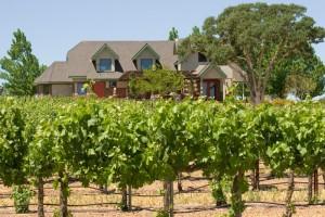 San Marcos Creek Vineyard Tasting room