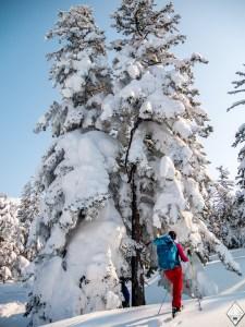 ski a furano hokkaido japon