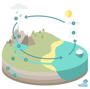 Le cycle de l'eau - schéma