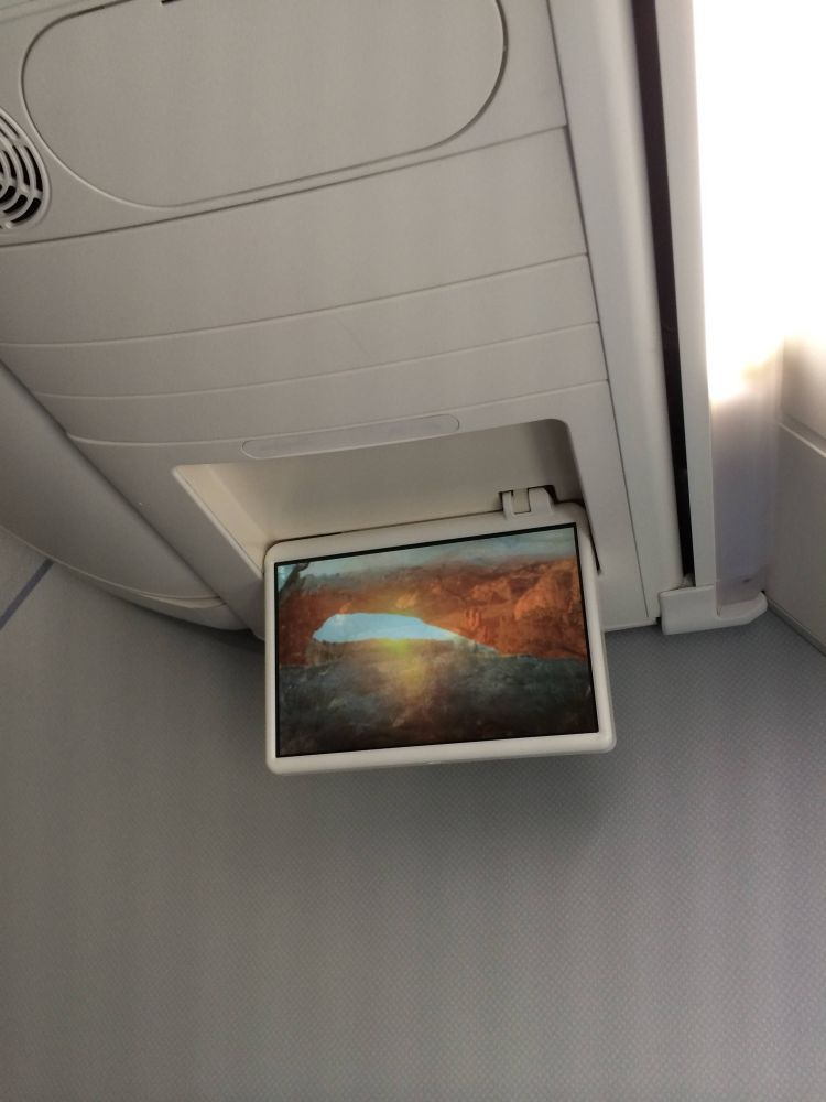 American Airlines First Class 737-800 Sky Interior