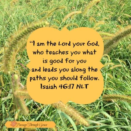 Isaiah 46-17