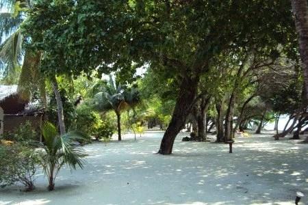 Jardins nos hotéis nas Maldivas