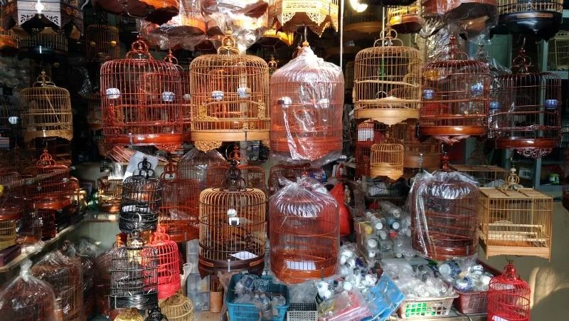 bird-market-hong-kong