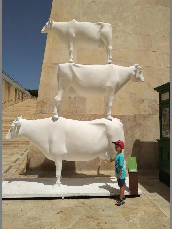 Vacas empilhadas em Valeta