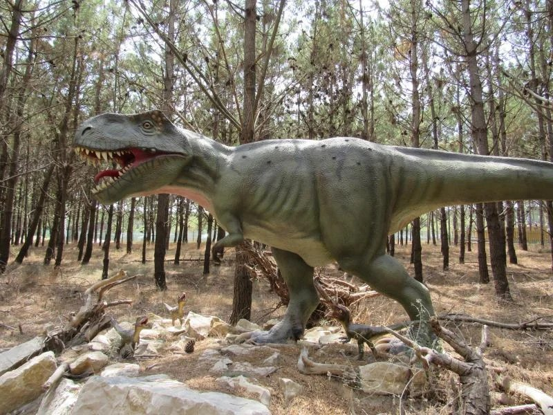 Tyrannussauros rex
