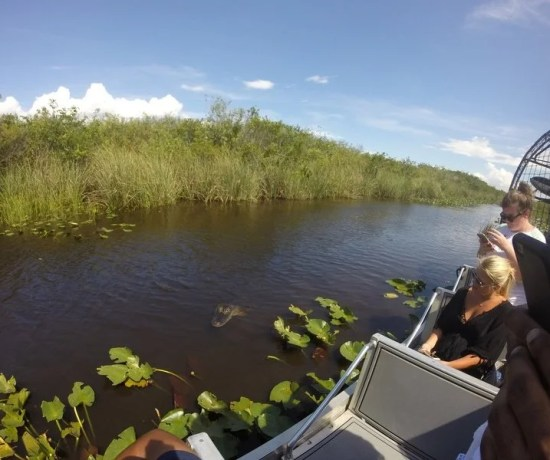 Visitar The Everglades National Park em Miami