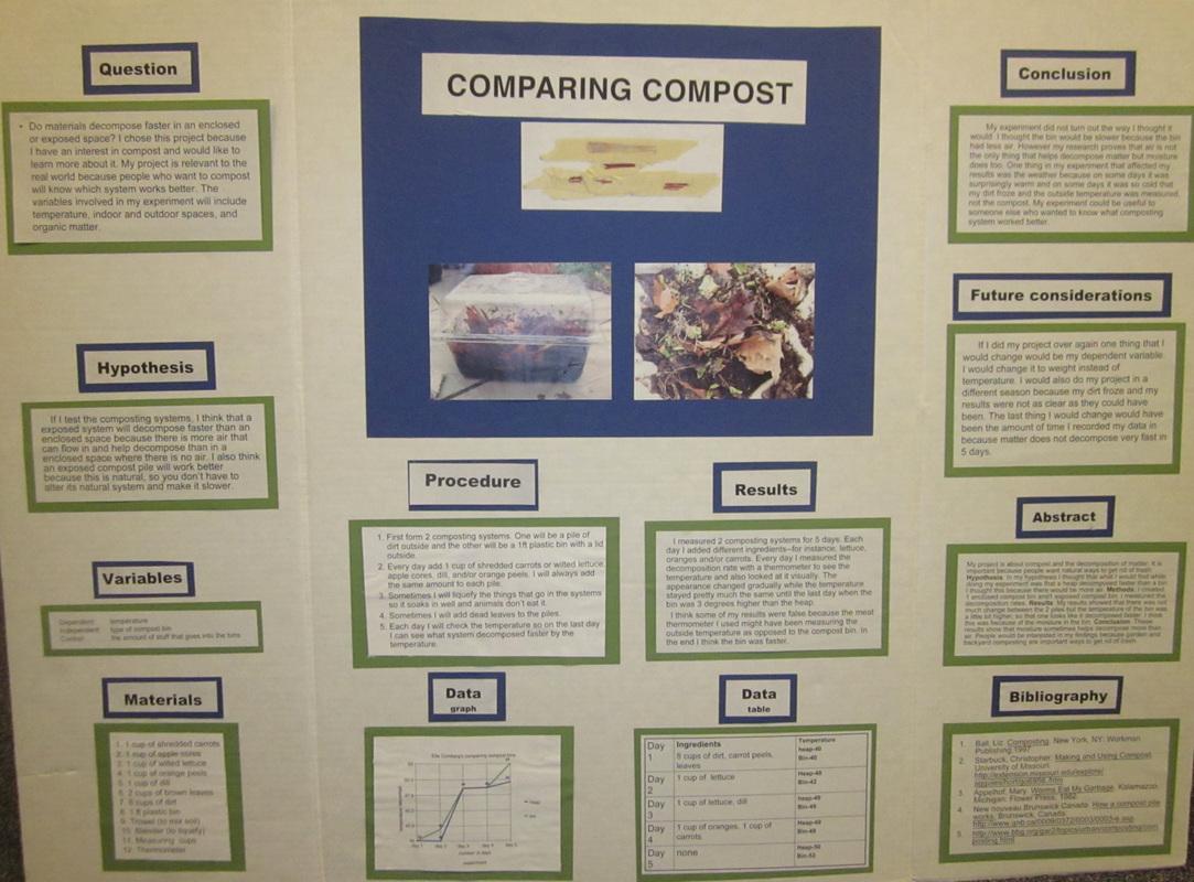 science project board sample