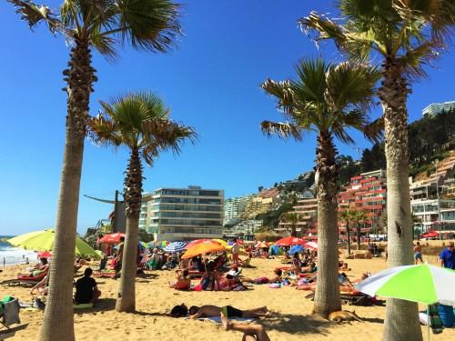 Playa Renaca - Galéra Curtindo o Sol