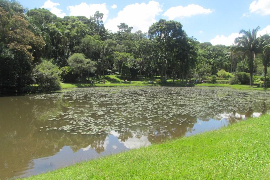 Lago das Linfeias - Jardim Botânico São Paulo - Foto: Patrícia Ribeiro/Passeios Baratos em SP