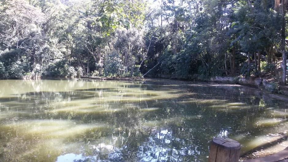Lago no Parque do Jaraguá