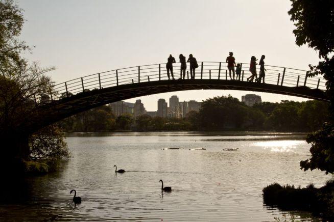 Parque do Ibirapuera ao entardecer. Foto: José Cordeiro/SPTuris