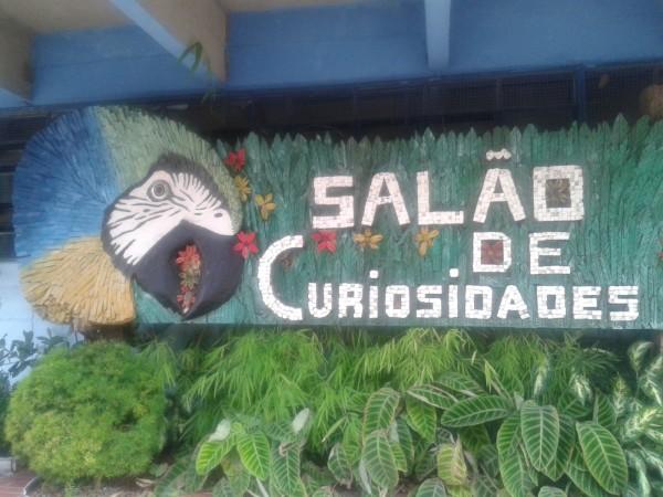 O Salão das Curiosidades esta sob os cuidados do funcionário do parque Kleber da Silva Jardim, que é artista plástico