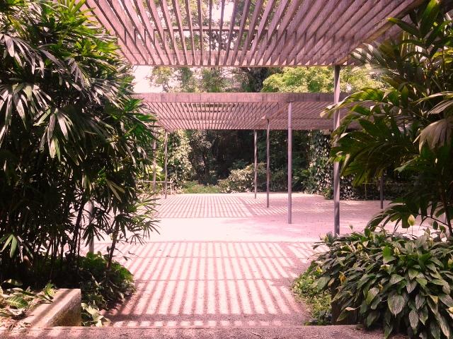 Jardim projeto por Burle Marx Foto: Patrícia Ribeiro/Passeios Baratos em SP