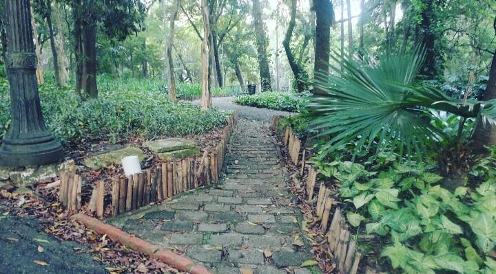 O parque é muito arborizado e tem pequenas trilhas Foto: Vilma Alcântara