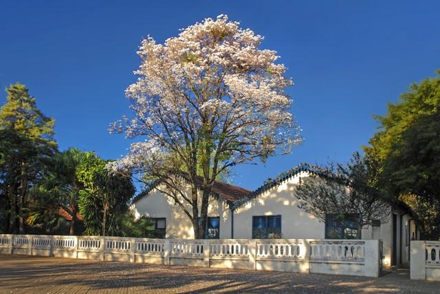 Museu Casa de Portinari Foto: Rubens Guerra