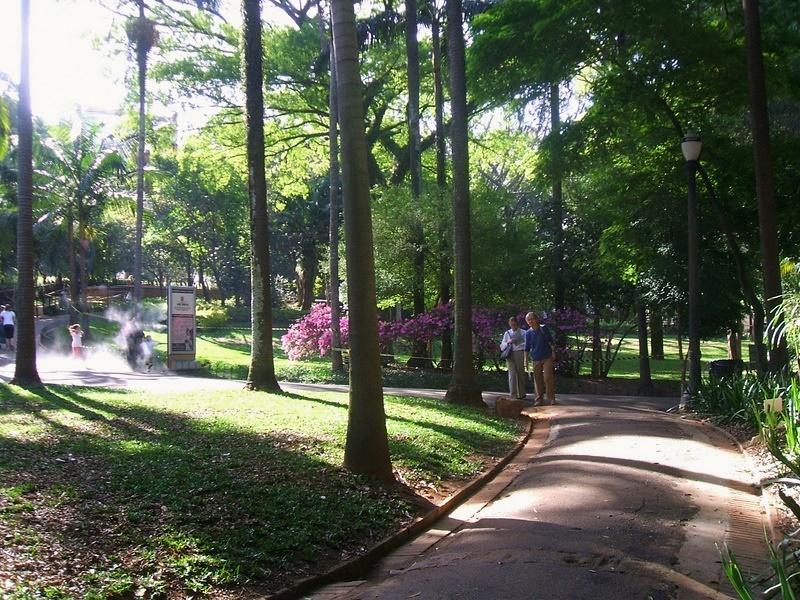 Alamedas para fazer caminhadas Foto: Caio Pimenta/SPTuris