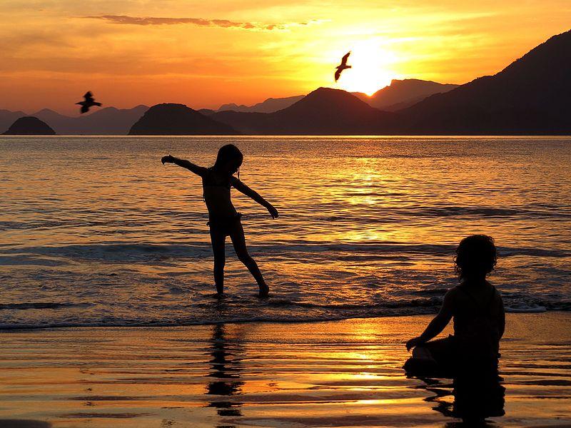 Voo de gaivotas na praia das Almadas wikimedia