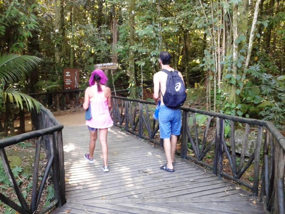 Trilha de acesso à cachoeira do Paraíso