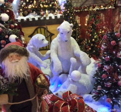 Visite Noeland, um reino mágico de Natal em Holambra
