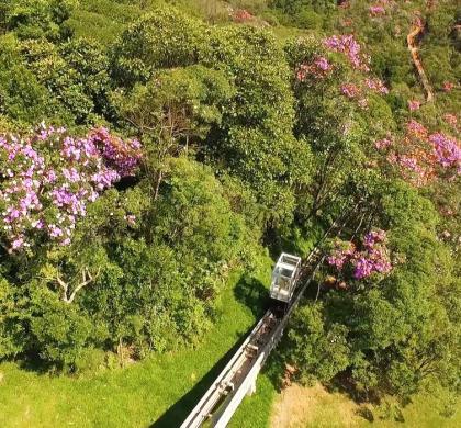 Conheça o novo Parque ecológico, na Rodovia dos Imigrantes