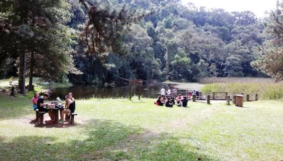 Lago das carpas no Parque da Cantareira