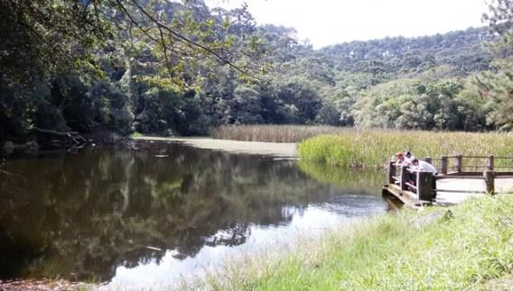 Lago das Carpas Parque da Cantareira