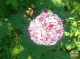 jardim de florença_20