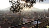 Lucca - torre Guinigi_20