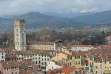 Lucca - torre Guinigi_32