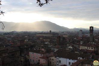 Lucca - torre Guinigi_39
