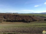 Valle D'Orcia_13